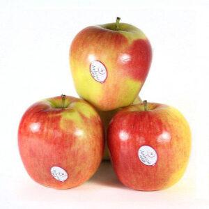 manzana-ambrosia