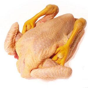 pollo pagés