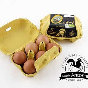 huevos-ecologicos