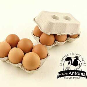 huevos-xl
