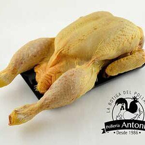 pollo-65-grano